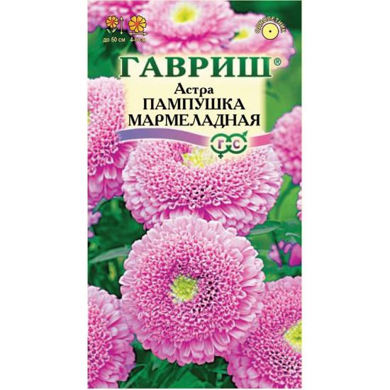 Астра Пампушка мармеладная ( Г )